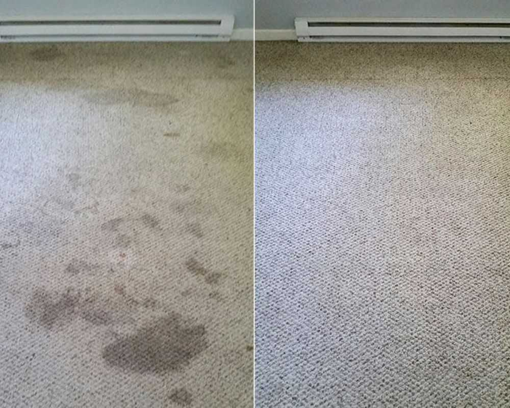 Carpet Cleaners Cambridgeshire