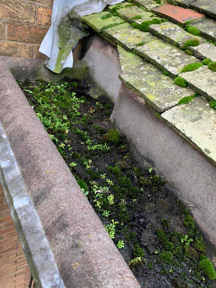 gutter cleaning service before cambridge