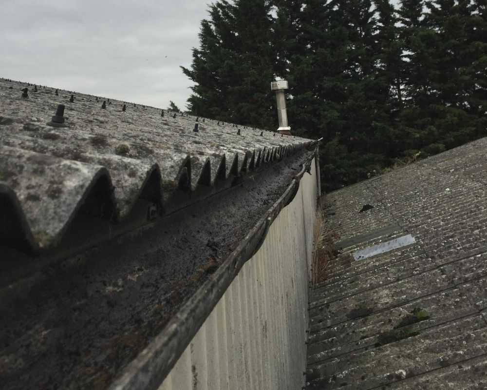professional gutter cleaning services huntingdon