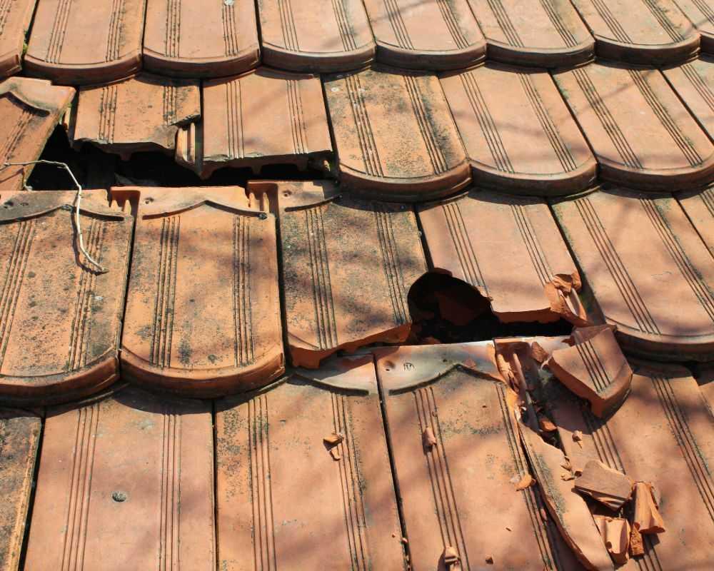 roof repair company ely